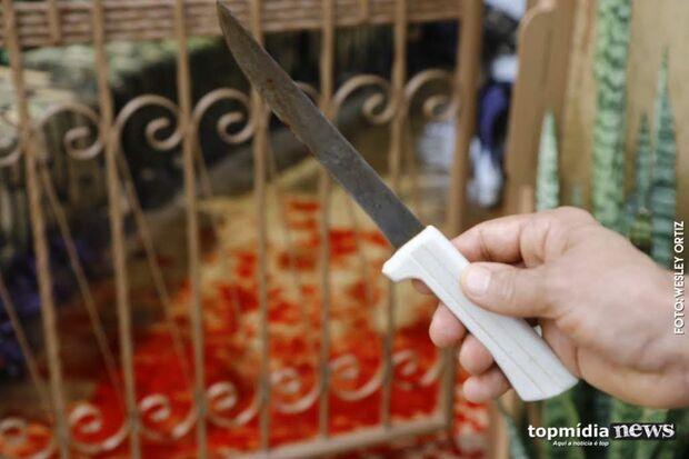 Bêbado, jovem mata cachorro com seis facadas em Campo Grande