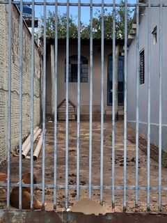 Sem água e comida, cachorro é abandonado em meio às fezes em Campo Grande