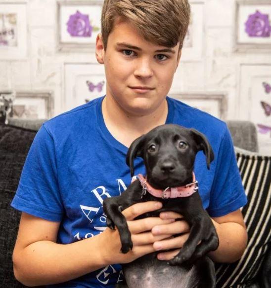 Batizada de 'Canguru', cachorrinha de seis patas é adotada por adolescente