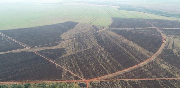 PMA autua usina em R$ 273 mil por incêndio em lavoura de cana-de-açúcar sem autorização