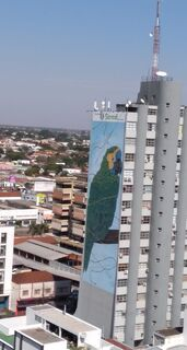 Revitalizado, painel do Papagaio Verdadeiro leva novas cores à região central da Capital