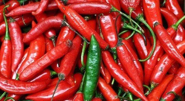 Pimenta na comida pode levar à demência, revela estudo