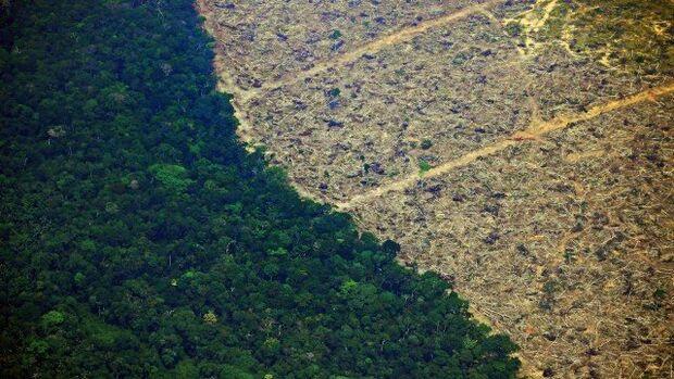 Primeira ação das Forças Armadas na Amazônia está prevista para este sábado