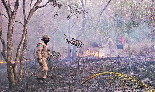 Incêndio atinge vegetação e ameaça casas na região de Bodoquena
