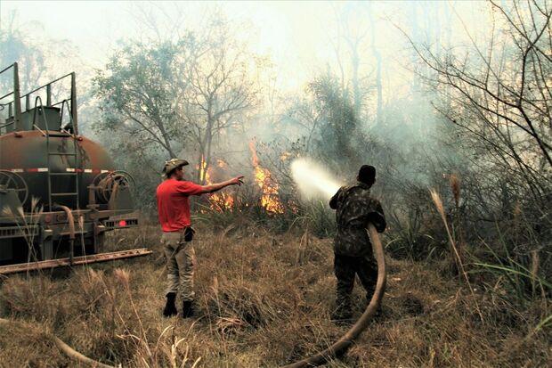 Guerra contra o fogo: brigadistas continuam combatendo incêndio no Pantanal