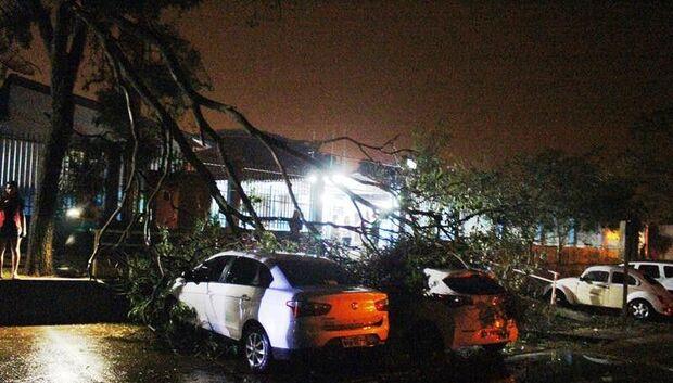 Região sul de Amambai é destruída por forte vendaval