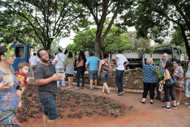 SEMANA DA ÁRVORE: prefeitura distribui mudas frutíferas em Campo Grande