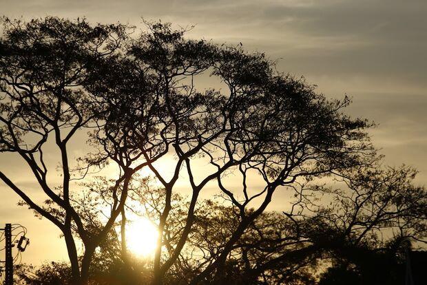 Terça-feira começa com calor intenso e sol encoberto por névoa seca na Capital