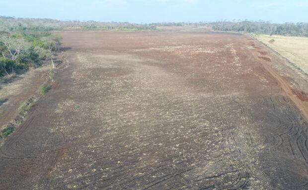 Fazendeiro é multado em R$ 224 mil por desmatamento e incêndio no MS