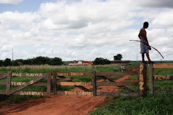Dono de fazenda denuncia indígenas por roubo e incêndio em Dourados