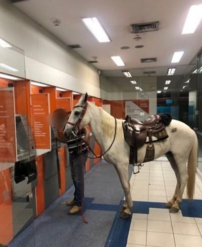 Amigo para todas as horas: homem vai sacar dinheiro e leva cavalo para dentro de agência