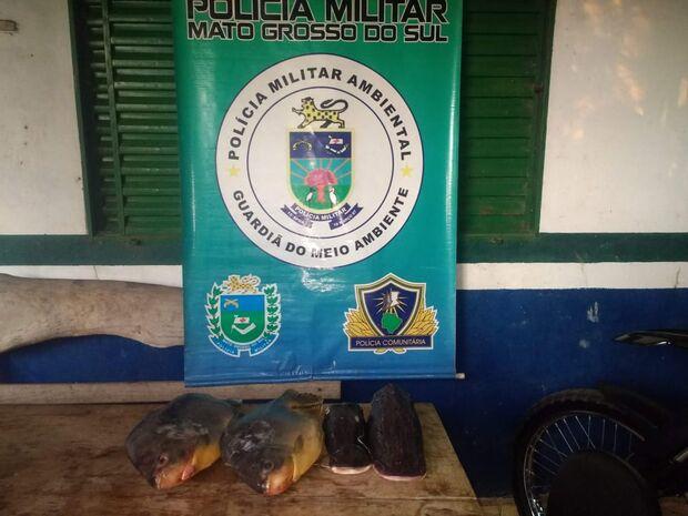 PMA autua dono de conveniência por venda de pescado ilegal em Aquidauana