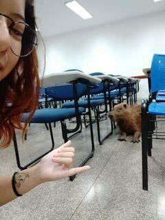 Acadêmica flagra capivara em sala da UFMS e post viraliza em Campo Grande