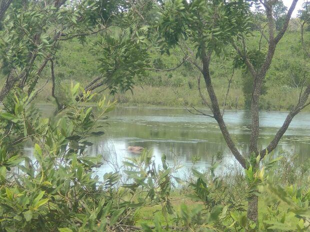 Corpo é encontrado boiando em lago próximo à rodovia