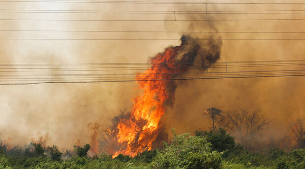 Área queimada no Pantanal chega a 122 mil hectares e força-tarefa intensifica combate