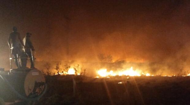 Chuva alivia incêndio no Pantanal e focos diminuem