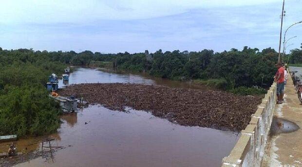 Imasul investiga origem de material que impede navegação no Rio Miranda