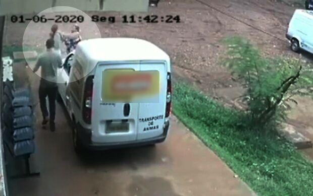 VÍDEO: mulher agride funcionárias de canil após deixar cachorros na porta e tentar sair