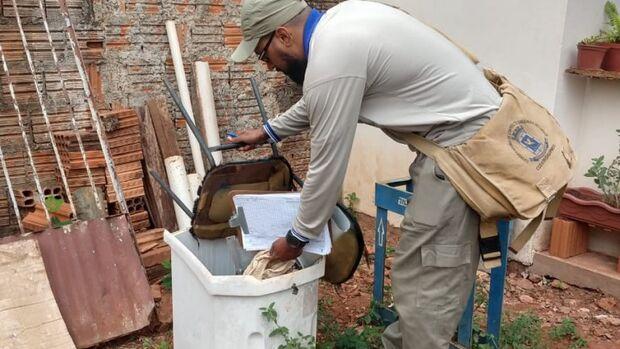 Sete áreas de Campo Grande estão em situação de risco para epidemia de dengue