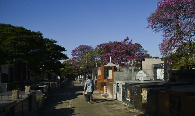 TRAGÉDIA ANUNCIADA: Brasil está com 29,9 mil mortos pela covid