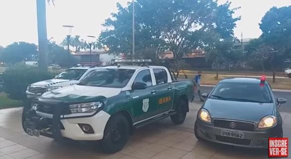 CUIDADO: cobra naja que deixou estudante em estado grave está desaparecida