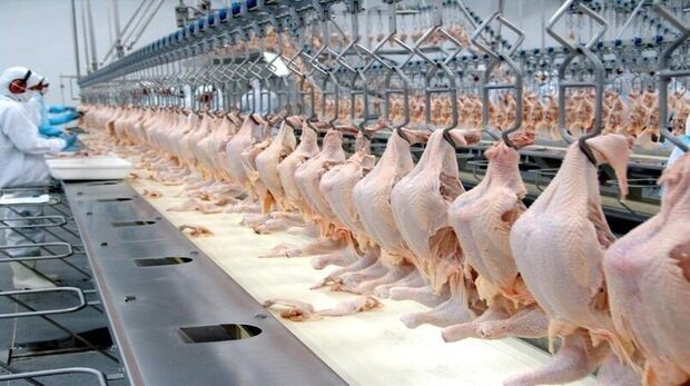 China diz que encontrou coronavírus em frango brasileiro