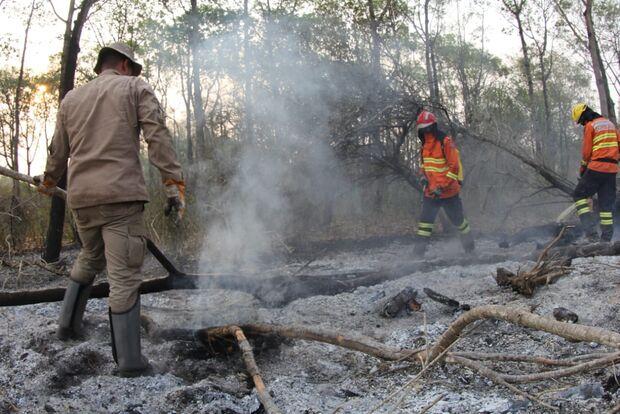 Pantanal: bombeiros fazem intenso combate às queimadas no Porto da Manga