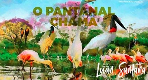 Luan Santana anuncia live direto do Pantanal: 'quero mostrar o que está acontecendo'