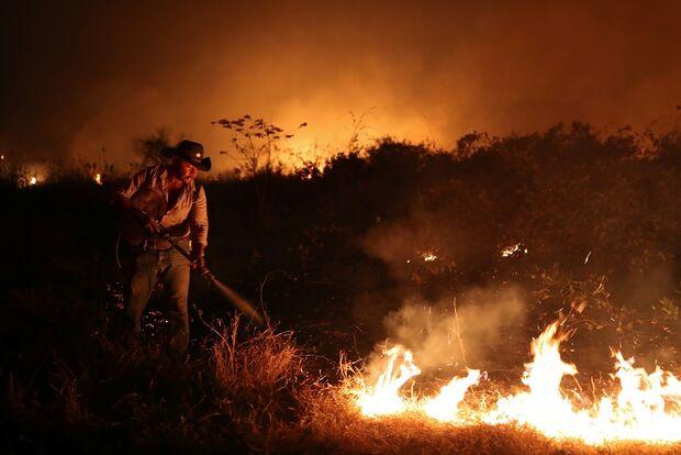 Mesmo com fogo intenso no Pantanal, multas do Ibama caíram 22% na região