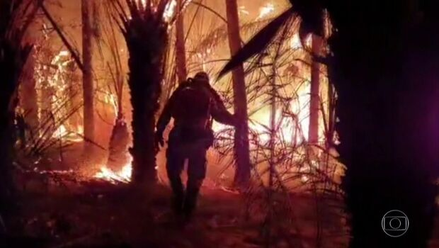 Salles diz que governo federal é responsável por 6% do Pantanal