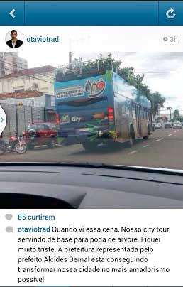 Otávio Trad flagra City Tour transportando galhos de  árvores