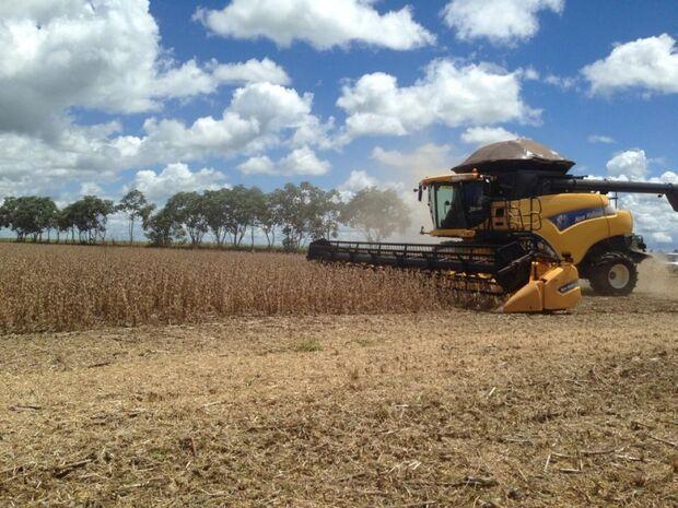 Soja 2013/14 tem aproveitamento de 2% na colheita