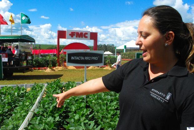 Multinacionais oferecem tecnologia de ponta no cultivo de sementes