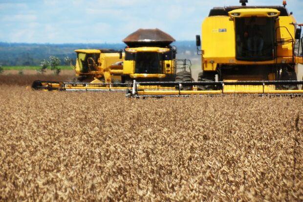 Colheita de soja em MS já alcançou 70% do total previsto