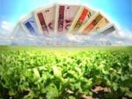 Operações de crédito rural superaram R$ 207 bilhões este ano