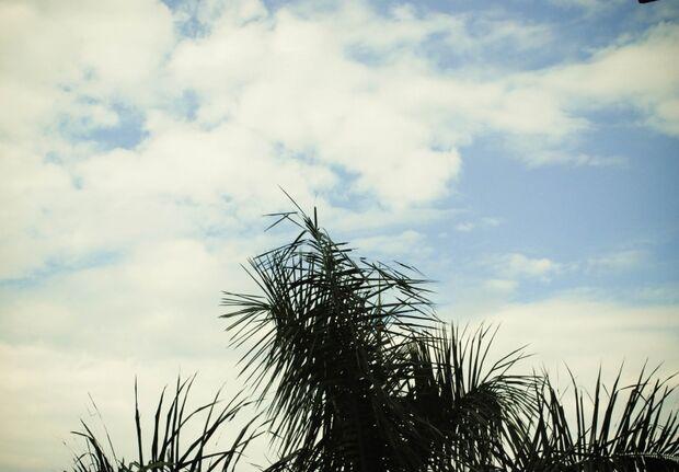 Calor com promessa de chuva neste domingo