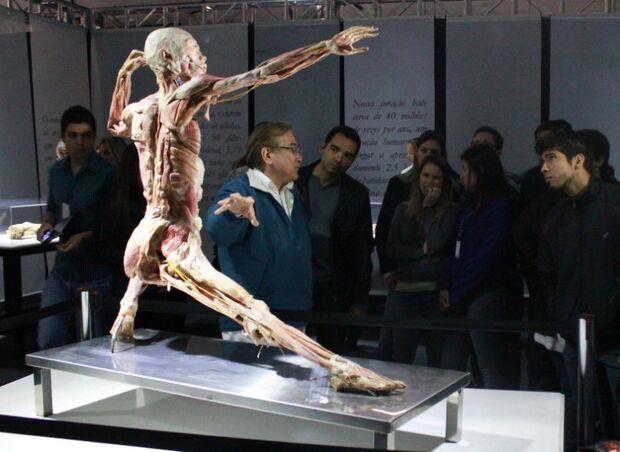 Human Bodies encerra exposição no próximo domingo