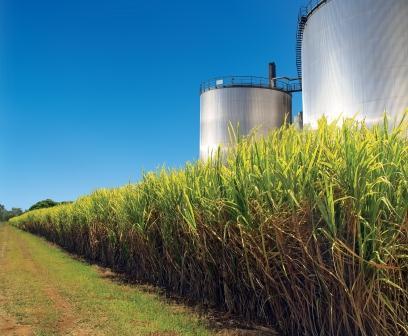 Etanol de 2ªgeração deve ser produzido comercialmente em 2014 no Brasil