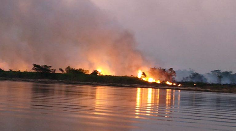Queimada no Pantanal: emergência climática