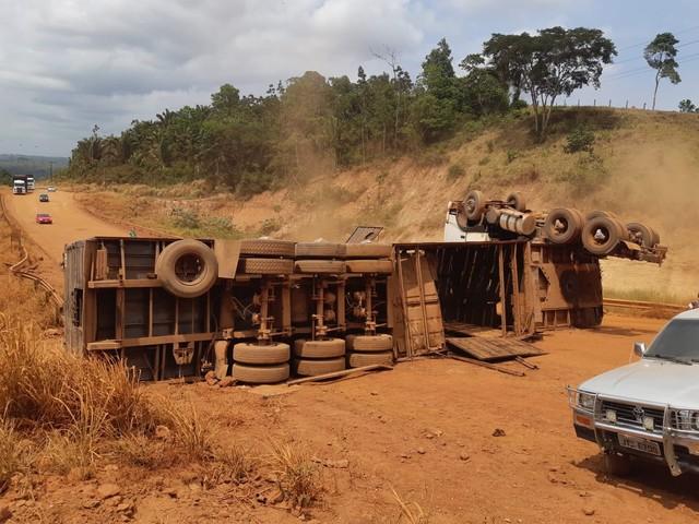 Caminhão carregado de gado tomba no PA e bois são saqueados e arrastados pela estrada - Top Mídia News